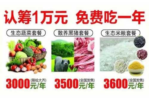 农产品免费模式,认筹1万免费吃一年菜,1年后再无息退还10000元