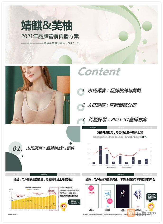 2021婧麒品牌营销传播方案,母婴市场洞察与挑战